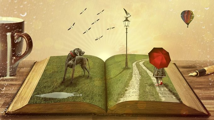 Livre imagination.jpg